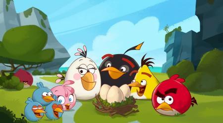 Angry bird group