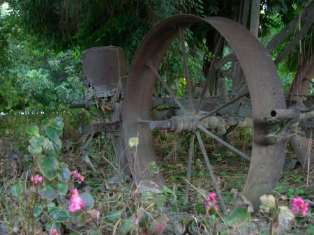 Antiquated Farm Equipment