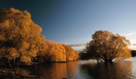 Autumn at Lake Tekapo NZ (24)