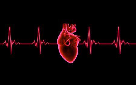 Beating Heart - ECG Graph