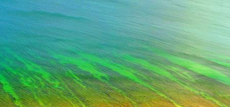 Beautiful natural pattern - Ocean ripple