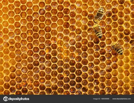 Beehive texture