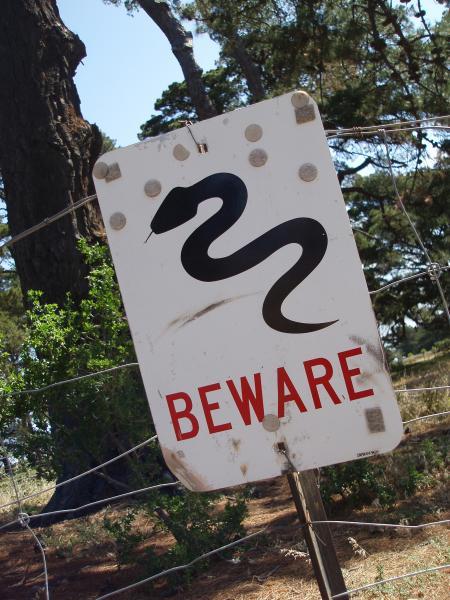 Beware of snake