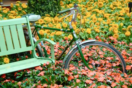 Bicycle in the Flower Garden