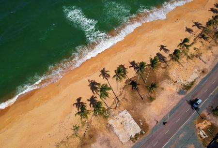Bird's Eye View of Seashore