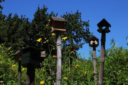 Birdhouses in the grass