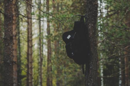 Black Backpack Hanging on Tree