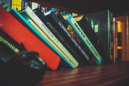 Black White Book Set in Brown Wooden Book Shelf