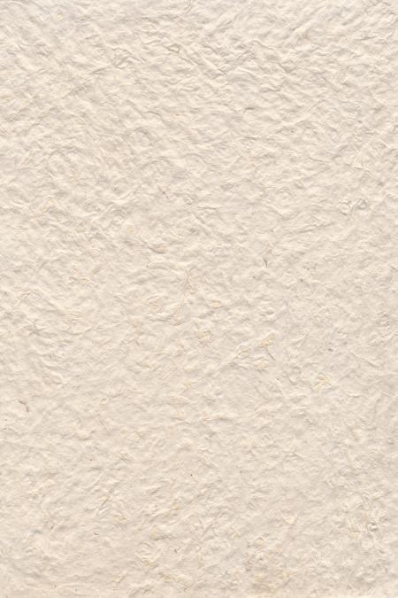 Blank Parchment Texture