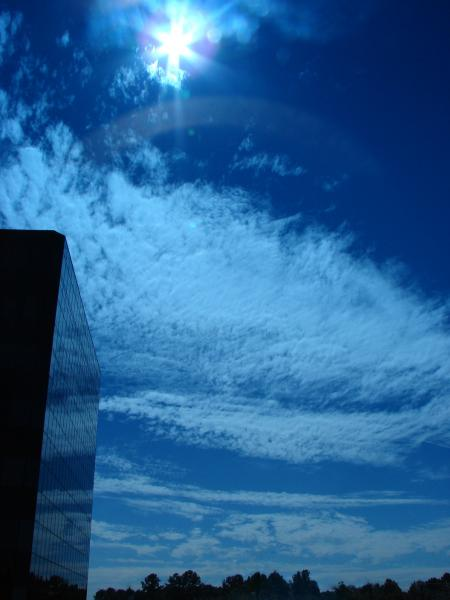 Blue Skies at the Office