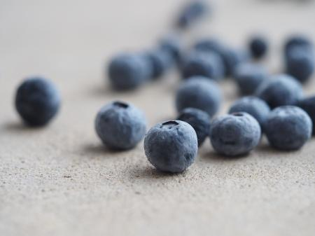 Blueberry Lot