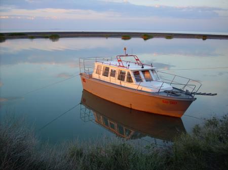Boat near the shore
