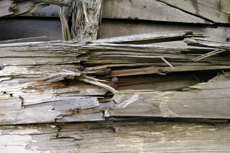 Broken wood texture