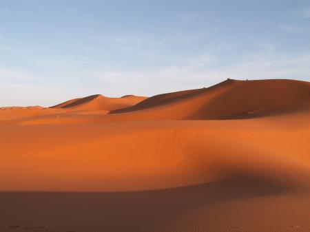 Brown Desert