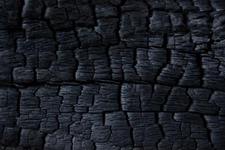 Charred Wood Texture