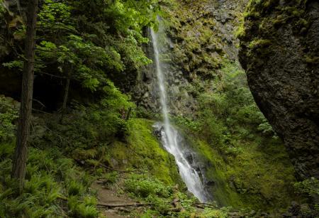 Cabin Creek Waterfall, Oregon