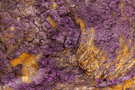 Charred Wood Texture - Purple Gold HDR