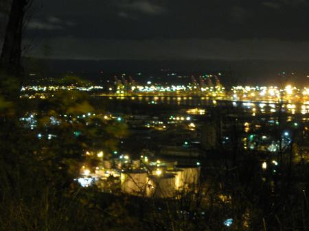 City from hillside near Missy's place at night 7