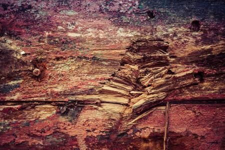 Colorful Grunge Wood Texture