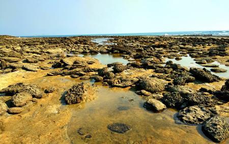 Coral Sea Beach at Chera Dwip, Saint Martin's Island