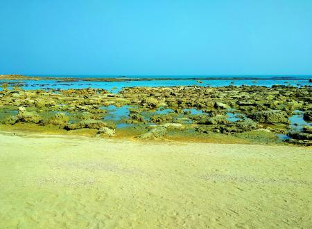 Coral Sea Beach of Chera Dwip, Saint Martin's Island