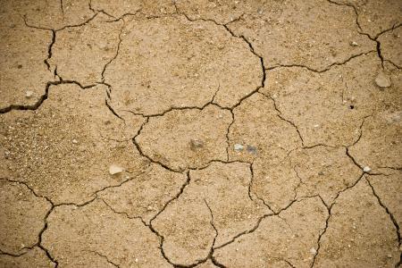 Mud surface