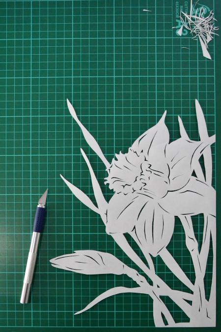 Rhododendron 'Banri-no-Kirameki' bonsai