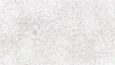 Dense Sketch Texture