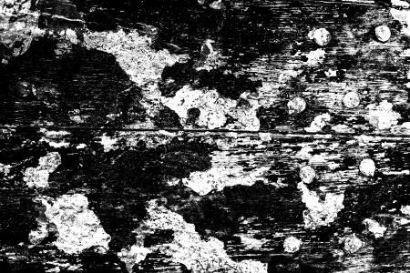 Distressed Grunge Wood Texture