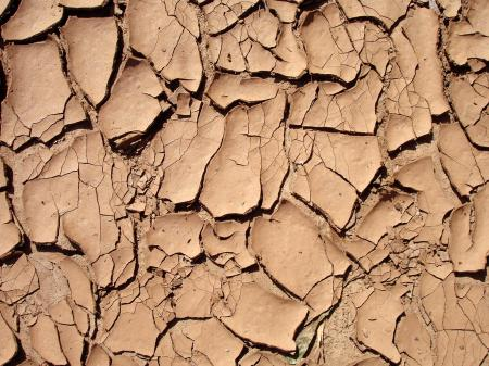Dry and cracked surface
