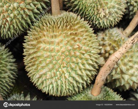 Durian Fruit Sale