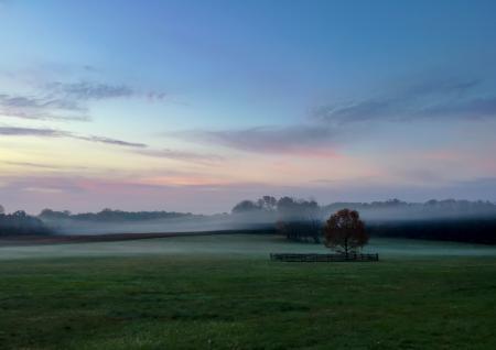 Early morning fog over Princeton Battlefield Park