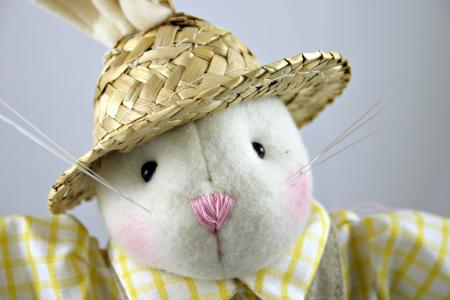 Easter rabbit with a hat