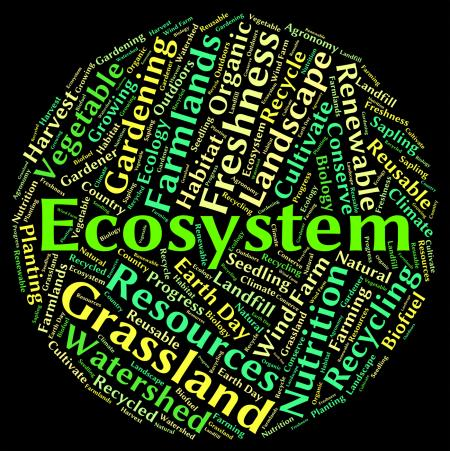 Ecosystem word shows eco biosystem and ecology