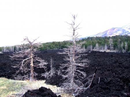 Etna-Volcano-Sicily - Creative Commons by gnuckx