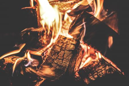 Focus Photography of a Ignited Firewood