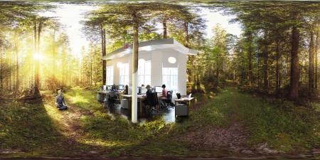 Forest Workplace