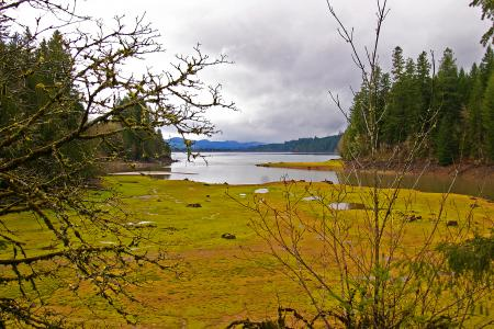 Foster Lake, Oregon, Tributary end