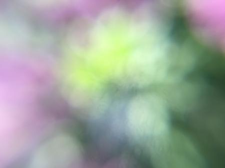 Free texture - Lilac bokeh