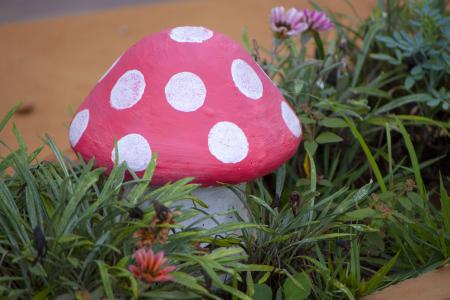 Garden mushroom surrounded by plants