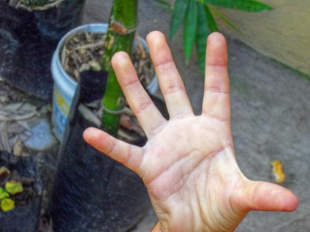 Girls hand