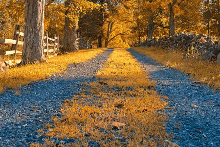Gold Gravel Road - HDR