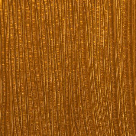 Gold Paint Texture