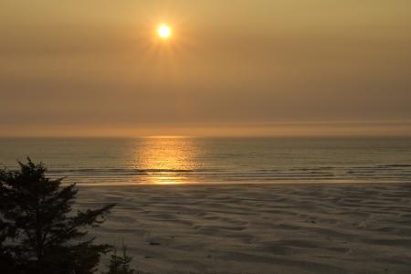 Golden sunset Oregon coast.