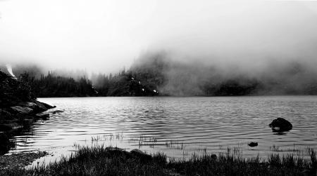 Gray Scale Body of Water