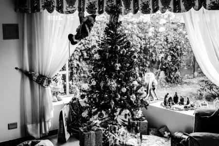 Grayscale Photo of Christmas