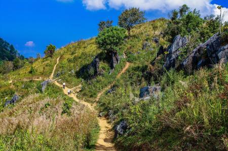 Green Grass Filled Hill Under Blue Sky