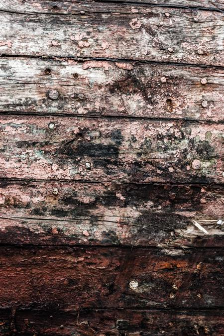 Gritty Wood Texture Background