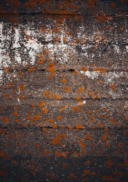 Grunge Concrete Wall Background