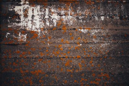 Grunge Old Concrete Wall Texture
